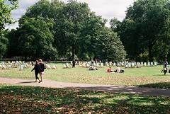 (Sophie Somebody) Tags: park trees summer people london walking picnic sitting stjamespark deckchairs fallenleaves