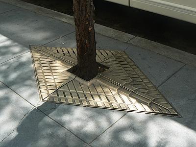 plaque d'arbre .jpg