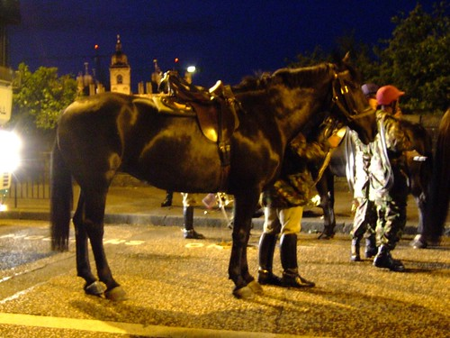 Edinburgh Tattoo cavalry horses 6