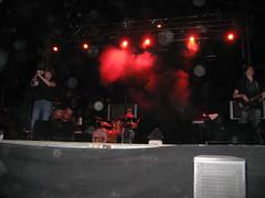 nu-b en directo (Alex CD) Tags: mariposa nub efecto ripollet