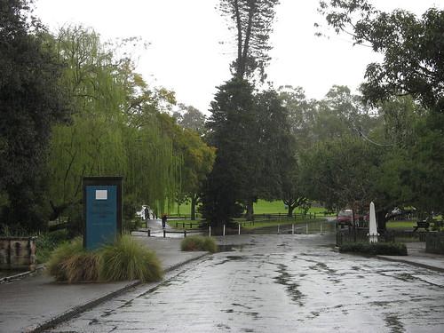Rainy Parramatta