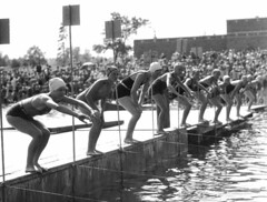 Ten swimmers lining up to start a race at Gree...