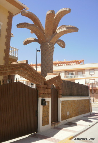 Palm Tree Stone
