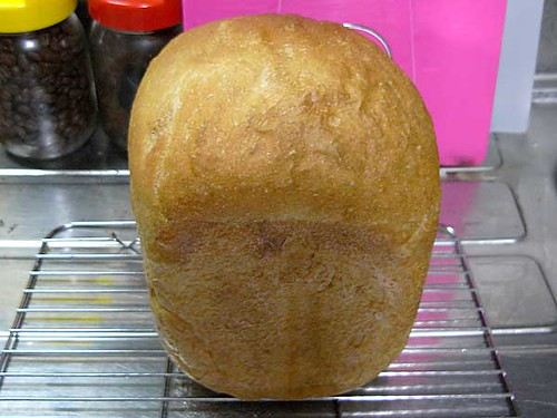 ホームベーカリーで2010年6月24日に作ったパン