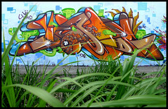 By JADE (DA2C) (Thias (-)) Tags: terrain streetart paris peru wall painting graffiti mural spray urbanart jade 94 painter graff aerosol bombing spraycanart perou pgc thias da2c photograff frenchgraff photograffcollectif