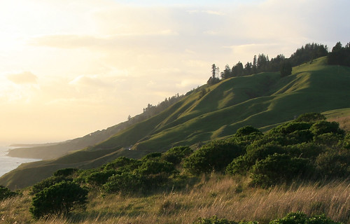 Emerald Hill