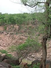 CIMG1984 (Kumara Sastry) Tags: india india2004 khajuraho gharial madhyapradesh raneh ranehfalls illigalindiatrip indiajuly2004