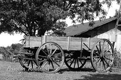 Wagon BW