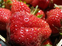 Fresh Strawberries (Chris Campbell) Tags: summer macro fruit strawberries 2007