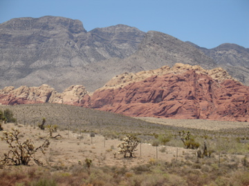 Red Rock Cyn 5