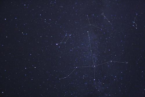 Gallery Stellar Searching 882509022_b55ba03f63