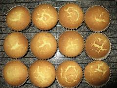 Cupcakes1_0098