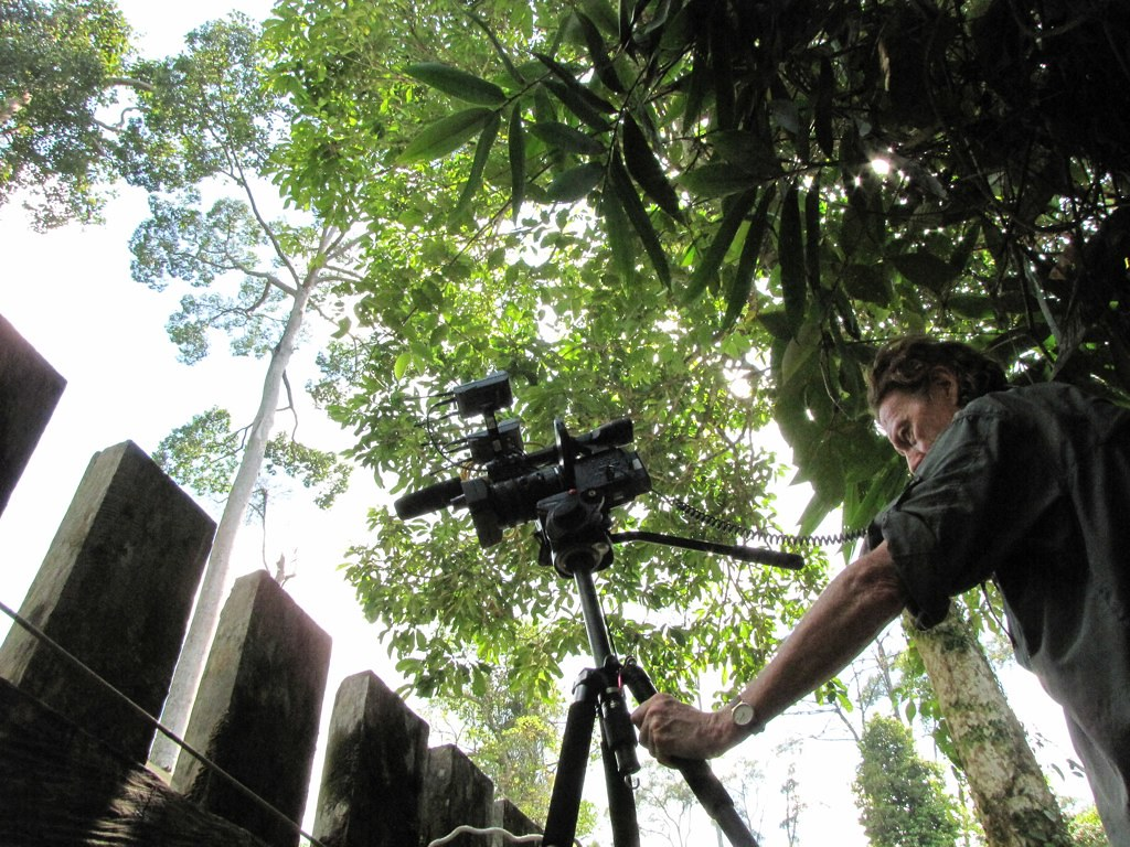 filming in the tropics