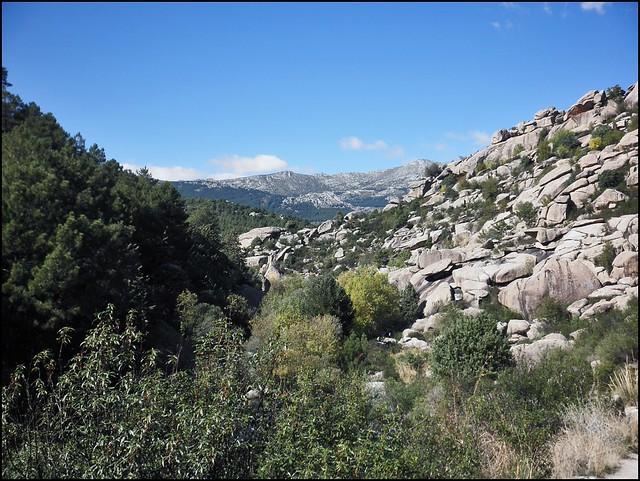 PA170329