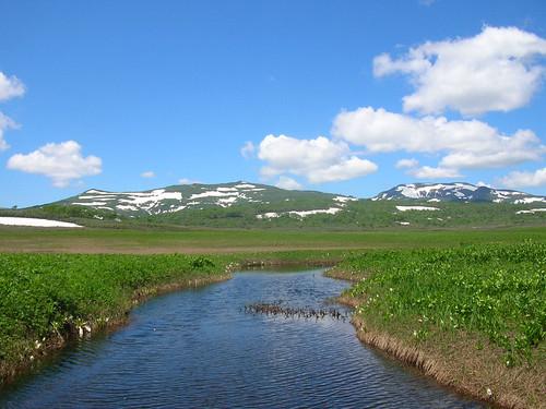 初夏の雨竜沼湿原と暑寒別岳