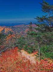 My Highlander's prayer (P. Oglesby) Tags: autumn landscapes tennessee trails northcarolina godscountry thehighlander godlovesyou coth appalachaintrail greatsmokymountainsnp absolutelystunningscapes dragondaggerphoto coth5 mygearandmepremium
