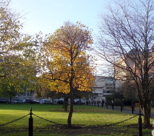 Trinity College Dublin-19d