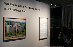 documenta 12 | Katerina Seda / For Every Dog A Different Master | 2007