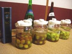 ブランデー梅酒、黒糖梅酒、はちみつ梅酒、本格梅酒