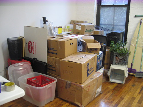 Removals Day and How to Handle It