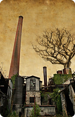 Nature vs. Industry (deatonstreet) Tags: sky color tree texture industry sepia photoshop industrial factory manipulation smokestack distillery oldcrow