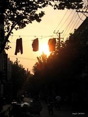(jijis) Tags: china light sunset golden asia shanghai jinxianlu
