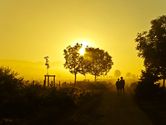 Together :) Razem :) [Explored] (raphic :)) Tags: morning santiago sun mist man tree saint yellow fog way james spain women warm camino para panasonic explore compostela dmc droga espania rano soce mga ty hiszpania drzewa kobieta caminodesantiagodecompostela fz8 magicunicornverybest mygearandmepremium mygearandmebronze mczyna
