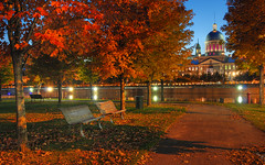 Night in Old Montreal, Quebec, Canada | urban skyline | automne a Montral | HDR | davidgiralphoto.com (David Giral | davidgiralphoto.com) Tags: old longexposure blue autumn trees red sky urban chien canada david reflection tree fall leaves skyline architecture port evening leaf nikon long exposure downtown cityscape market quebec dusk montreal landmark hour entre loup bluehour d200 reds et arbre march hdr vieux heure bonsecours giral magique 4xp photomatix nikond200 supershot 18200mmf3556gvr entrechienetloup tthdr supershots copyrightdgiral davidgiral bestofr