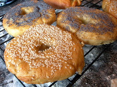 Plain bagels with toppings
