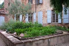 Mouissac-garden2