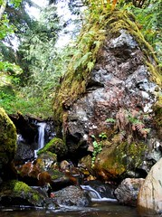 WATER, MOSS AND BIG ROCK
