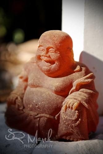 Buddha sun bathing