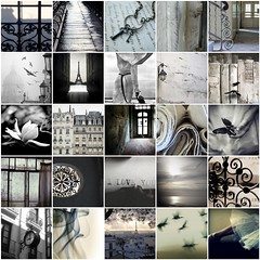 TILT~ Ebony, Ivory & In Between (Inspire me 365) Tags: blackwhite fdsflickrtoys gray cream ivory favorites helena reform ebonyivory mevoila leschick gregorybastien rosiehardy inspireme365 ebonyivoryinbetween