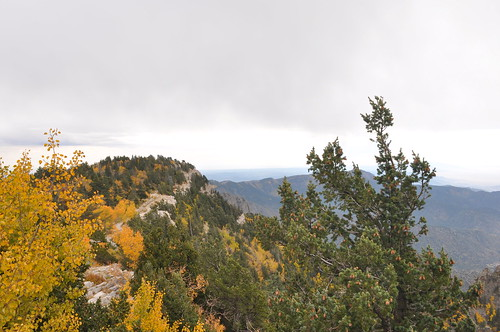 South from Sandia Crest