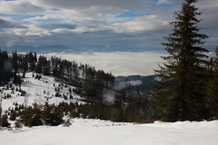 20100109-IMG_6249.jpg (Rafal Kubik) Tags: winter snow mountains forest landscape beskidy beskidzywiecki