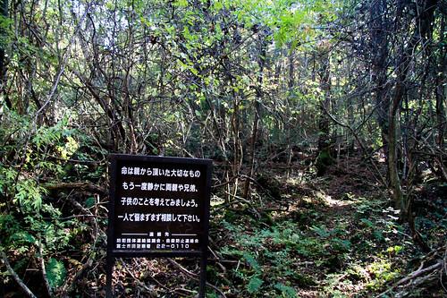 Monte Fuji - -141