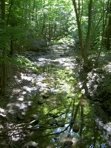 French Creek Reservation