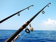 Fishing Poles (* andrea .) Tags: hawaii fishing powershot poles s2is myfavorite oldies