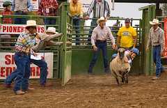 6yrOldSmile (Steven Ford / snowbasinbumps) Tags: sports beautiful kids utah sheep desire western rodeo cowgirl clowns ogden mutton pioneerdays topofutah stevenford lifeelevated envisionogden snowbasinbumps fordesignnet utahtravel ogdenutahpioneerdayscelebrates75thanniversary westerntravel