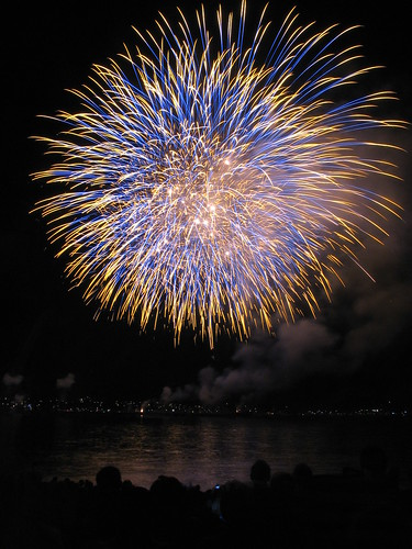 Fireworks over water, titled Celebration of Light