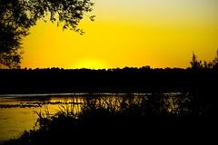 Sunset (Pixeleyes) Tags: sunset yellow cwd takeaclasswithdave cwdgs cwd302 cwdweek30 cwdgs30