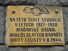The sign commemorating Radnóti's studies