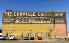 Moose Jaw Gold Standard - by ecstaticist