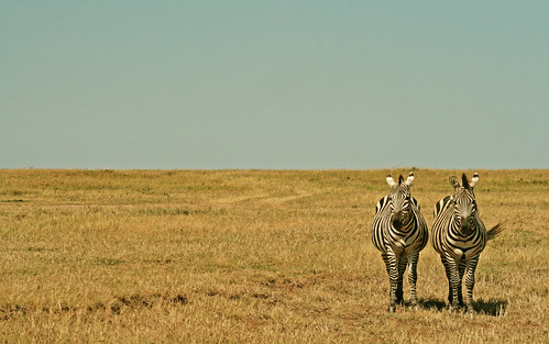 KENIA_flickr-057