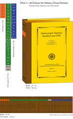 World Tipitaka Edition in Roman Script, 2005 (40 Volumes)