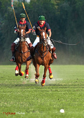 Success demands singleness of purpose. (Muhammad Fahad Raza) Tags: pakistan red horse cup yellow canon shoe memorial body guard culture tournament final jockey scouts ponies horseshoe dust punjab rider success purpose polo col presidents frontier poloponies rawalpindi demands horserider pakistanarmy singleness 40d pakistanpakistani safdar poloinpakistan presidentsbodyguard colsafdarmemorialcuppolotournamentfinal successdemandssinglenessofpurpose frontierscouts