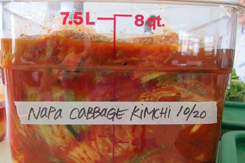 Making Kimchi: fermenting kimchi