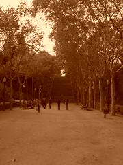 Eine Treppe im Park - antik (raikbeuchler) Tags: barcelona spain herbst catalonia treppe espana 2010 1929 katalonien weltausstellung anellaolimpica exposiciinternacionaldebarcelona parquedelacascades