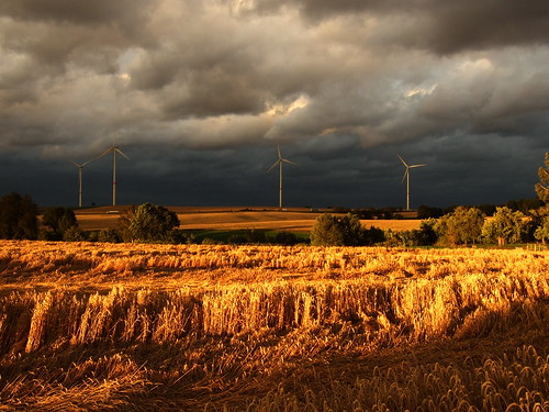 Clouds of Black and Fields of Gold