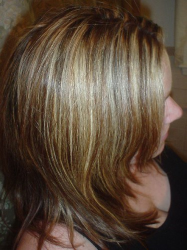 brown hair blonde highlights pictures. rown hair with londe